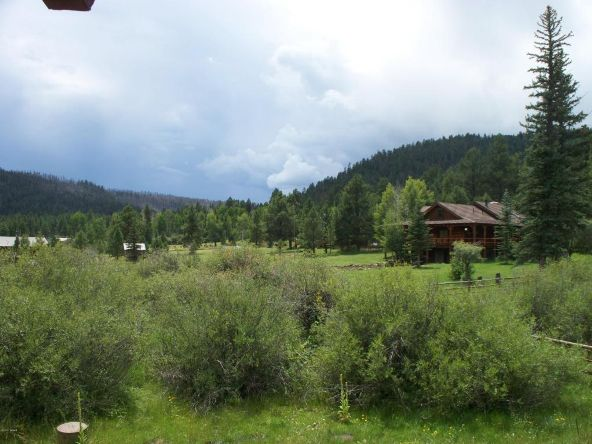 64 N. 1324cr, Greer, AZ 85927 Photo 6