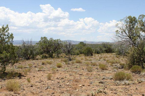3 Stockman, Ash Fork, AZ 86320 Photo 10