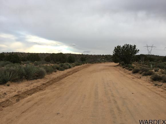 7340 N. Frerichs Ranch Rd., Hackberry, AZ 86411 Photo 24