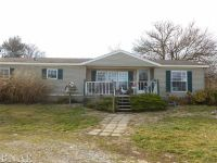 Home for sale: 612 Kickapoo Rd., Heyworth, IL 61745