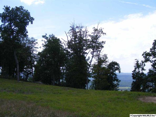 23350 N. County Rd. 89, Mentone, AL 35984 Photo 2