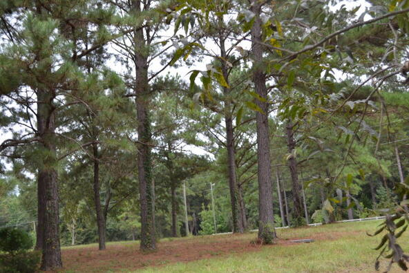 1723 Omussee, Dothan, AL 36303 Photo 23
