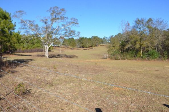 1365 County Rd. 104, Brundidge, AL 36010 Photo 23
