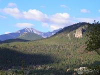 Home for sale: 175 Curry Dr., Estes Park, CO 80517
