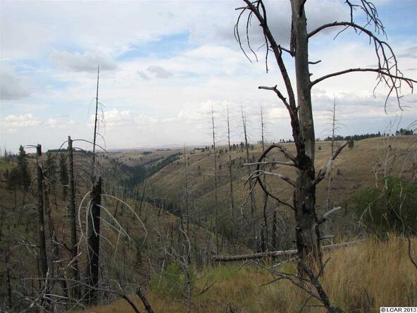 Sec. 34 Twp. 10 Range 42, Pomeroy, WA 99347 Photo 2