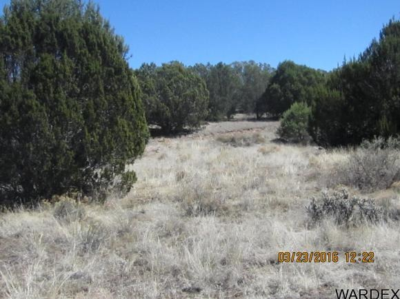 33307 W. El Caballo Rd., Seligman, AZ 86337 Photo 12