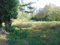 Home for sale: 0 Lynnwood Ave., Lewisburg, TN 37091