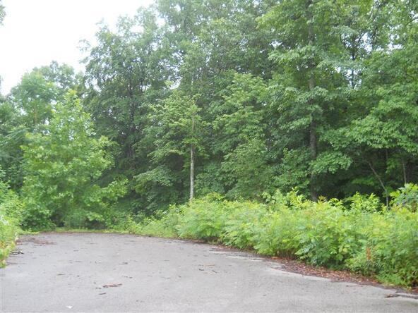 77 Close Lake Dr., Nancy, KY 42544 Photo 1