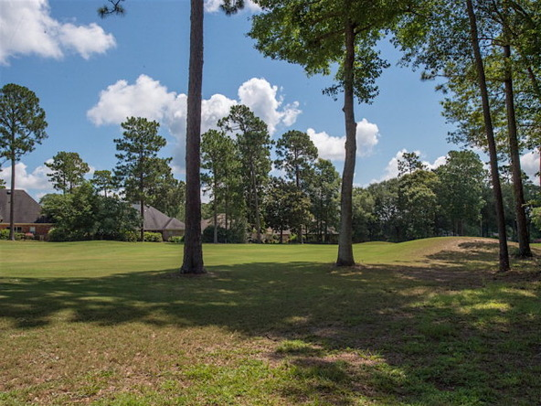 9201 Timbercreek Blvd., Daphne, AL 36527 Photo 39