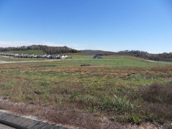 The Preserve At Clinch River, Oak Ridge, TN 37830 Photo 17