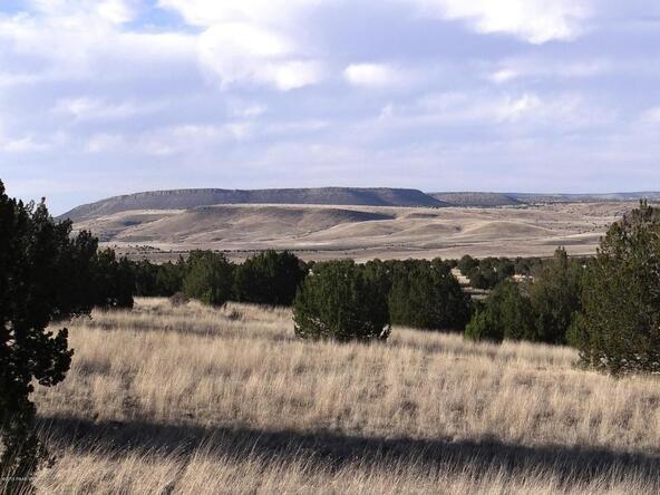 522 Sierra Verde Ranch, Seligman, AZ 86337 Photo 8
