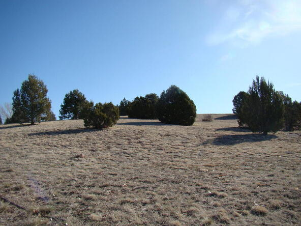 1185 Arrowhead Pass, Show Low, AZ 85901 Photo 8