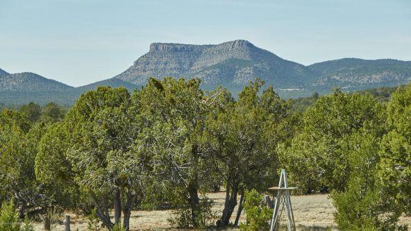 37750 W. Beau Hunter, Seligman, AZ 86337 Photo 22
