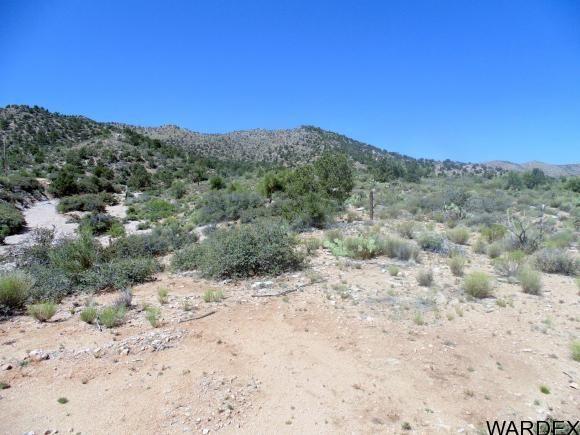 10763 E. Spring Valley Dr., Hackberry, AZ 86411 Photo 10
