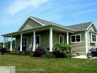 Home for sale: 1711 Wilson Rd. E., Ashley, MI 48806