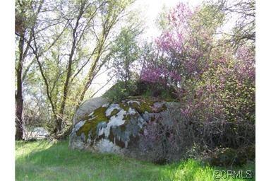 0 Lone Star Cir., Mariposa, CA 95338 Photo 7