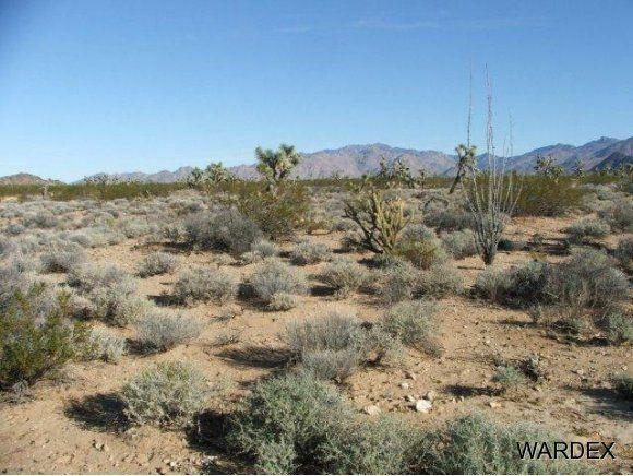 3529-D Arroyo Rd., Yucca, AZ 86438 Photo 8
