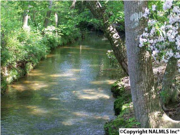 126 Caney Creek Dr., Rainsville, AL 35986 Photo 22