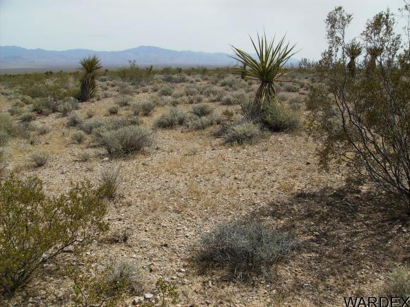 3448 S. Keystone Rd., Golden Valley, AZ 86413 Photo 2