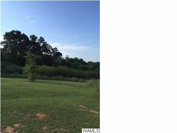 818 County Rd. 33, Greensboro, AL 36744 Photo 5