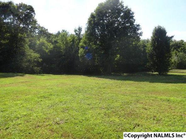 5219 Alabama Hwy. 40, Dutton, AL 35744 Photo 3