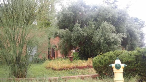 2331 E. 10th St., Douglas, AZ 85607 Photo 5