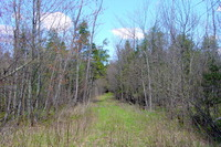 Home for sale: 60 Acres Cty. Rd. D, Holcombe, WI 54745