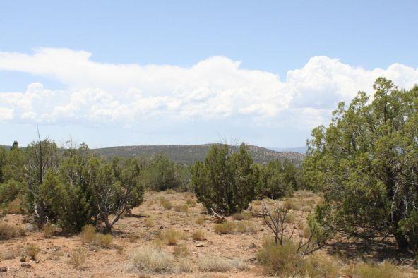 3 Stockman, Ash Fork, AZ 86320 Photo 8