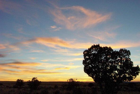6218 S. Prairie Grass Ln., Williams, AZ 86046 Photo 21