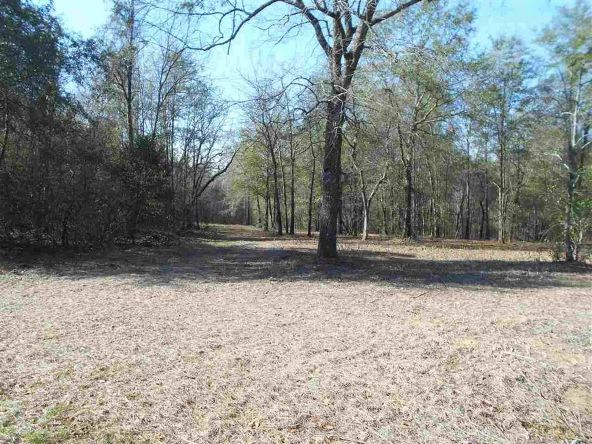 16.9 Acres Private Rd. 1363, Ariton, AL 36311 Photo 5
