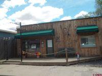Home for sale: 285 E. Bridge St. B, Hotchkiss, CO 81419