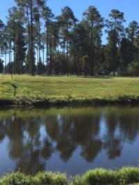 Home for sale: Lot 18 Cannon Branch Rd., Cordele, GA 31015