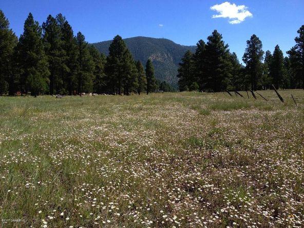 125 E. Mount Elden Lookout Rd., Flagstaff, AZ 86001 Photo 1
