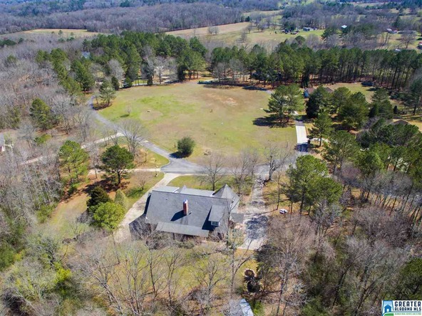 500 Hidden Lakes Ln., Munford, AL 36268 Photo 5