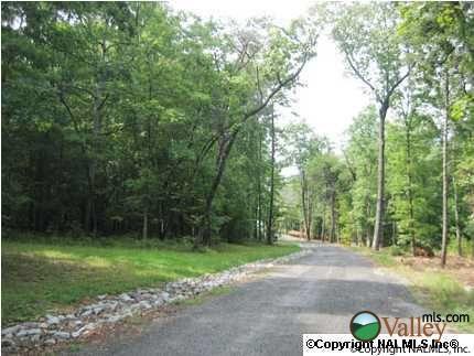 1 County Rd. 935, Mentone, AL 35984 Photo 1
