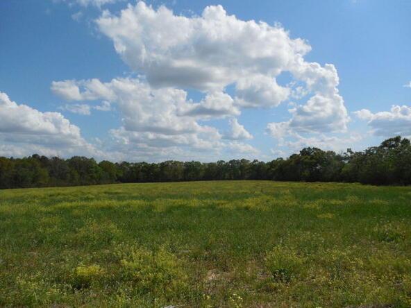 3 Acres Hardy Rd., Rehobeth, AL 36301 Photo 1