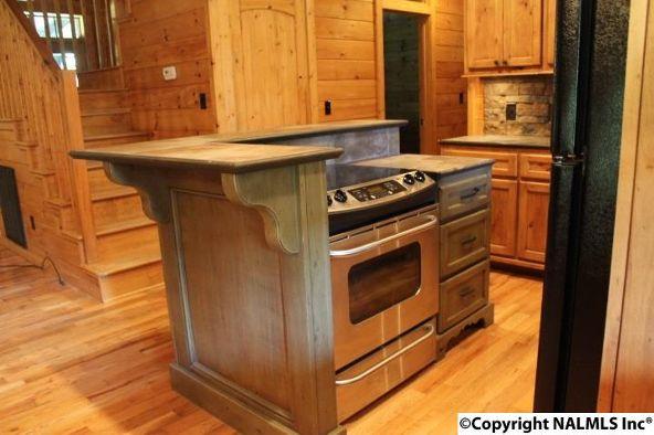 4475 County Rd. 106, Mentone, AL 35967 Photo 16