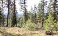 Home for sale: Tbd Majestic View Cir., McCall, ID 83638