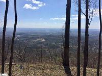 Home for sale: Boulder Lookout Dr., Landrum, SC 29661