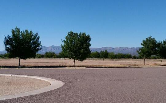 6505 W. Palo Verde Ln., Pima, AZ 85543 Photo 9
