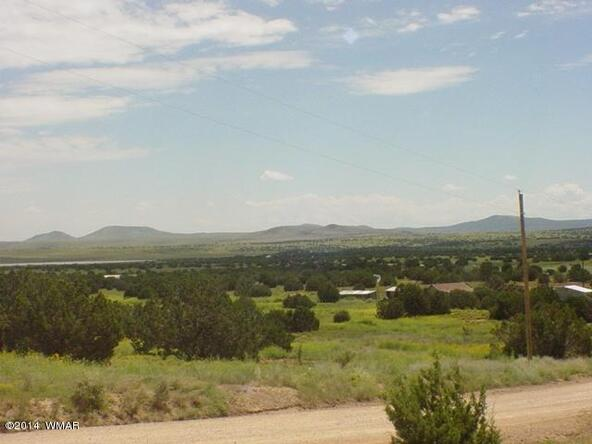 1b N. 8690, Concho, AZ 85924 Photo 9