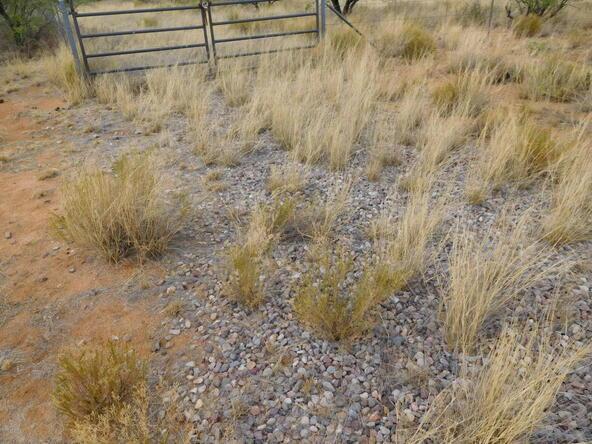 16705 S. Sierrita Mountain, Tucson, AZ 85736 Photo 7