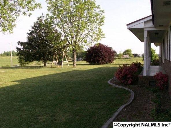 3372 County Rd. 52, Rogersville, AL 35652 Photo 9