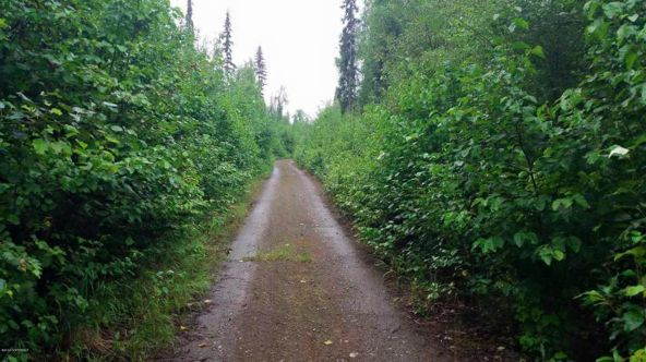 42274 S. Moose Track Ln., Talkeetna, AK 99676 Photo 6