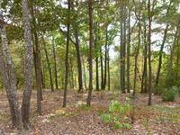 Home for sale: Granada Ln., Guntersville, AL 35976