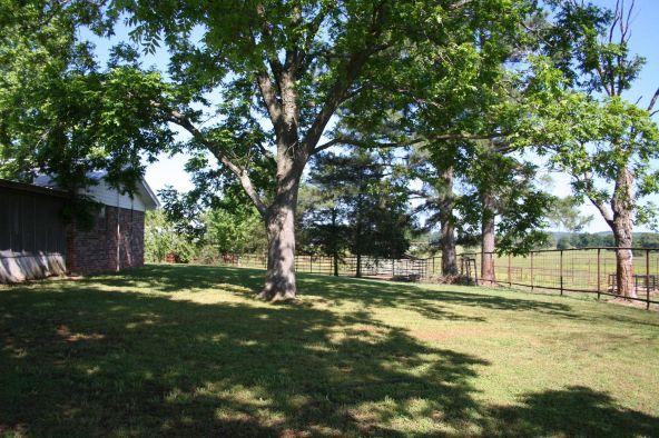 13142 Cedar Creek Rd., Belleville, AR 72824 Photo 64