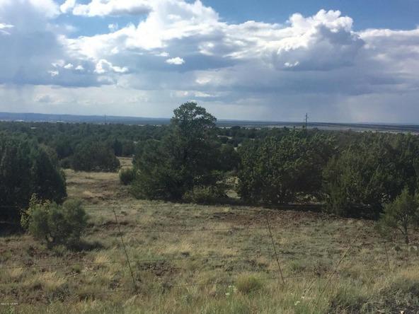 850 Cinder Pit Rd., Show Low, AZ 85901 Photo 48
