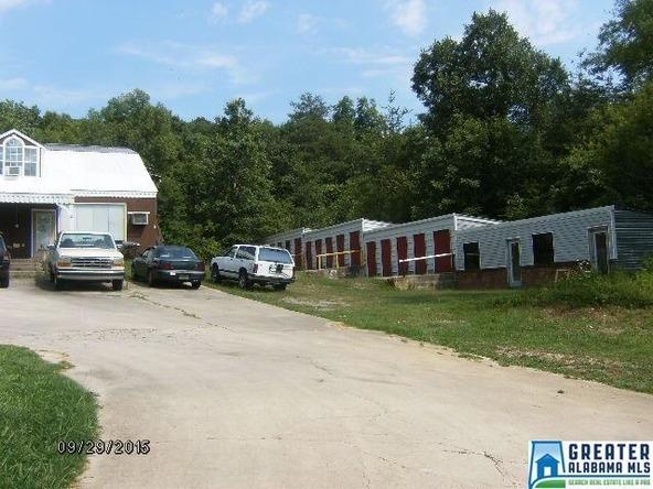 30 Valley Trail Ln., Warrior, AL 35079 Photo 23