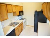 Home for sale: 45826 Prairiegrass Ct., Belleville, MI 48111