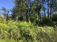 Home for sale: 11-2144 Kaleponi Dr., Volcano, HI 96785